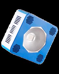 Bioledz 9600
