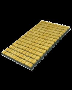 Stone Wool Tray - Cubos de 2,5x3,5cm